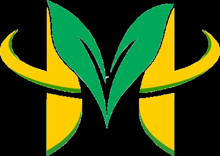 Multiagrisarana.com